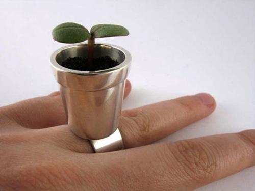 Кольцо-цветочный горшок