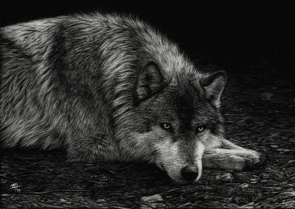 Волк в исполнении Кристины Пенеску