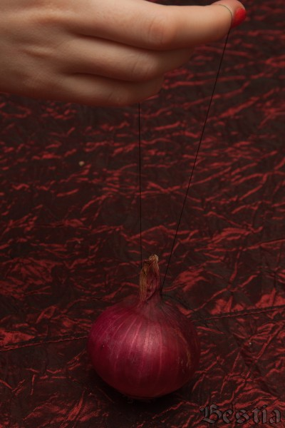 Луковица с нитью