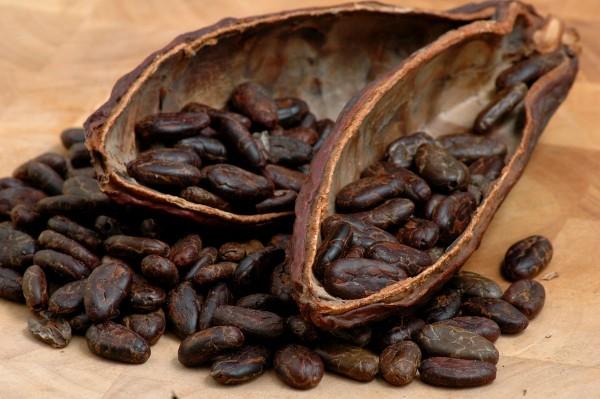 Сырые какао-бобы