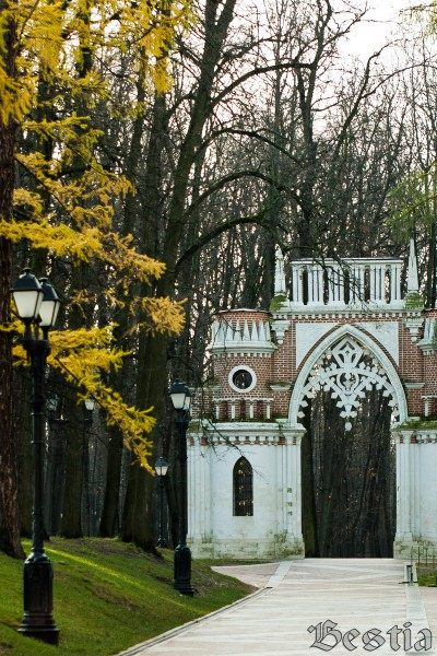Фигурные Виноградные ворота