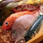 Блюда из рыбы. Хранение продуктов