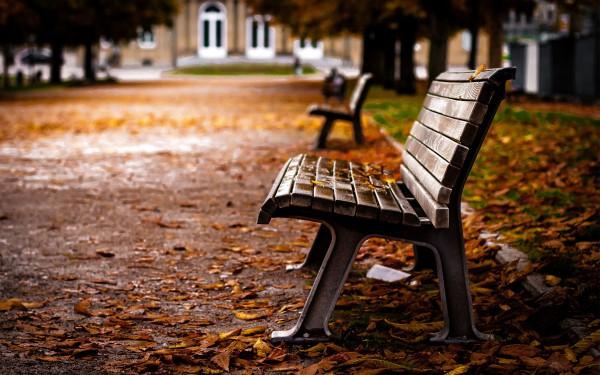 Скамья в парке
