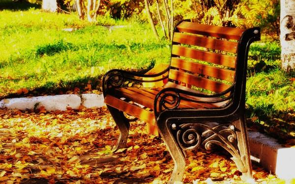 Осенняя скамья
