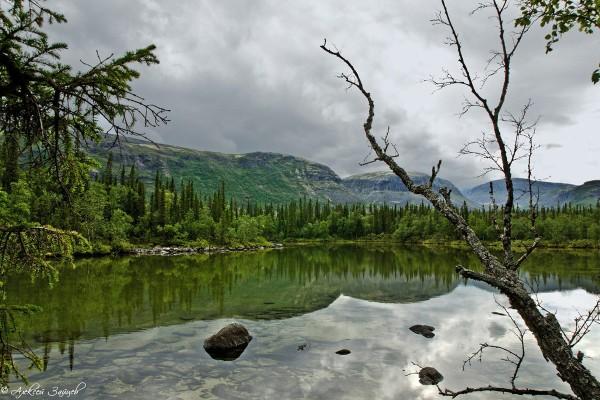 Озерный пейзаж